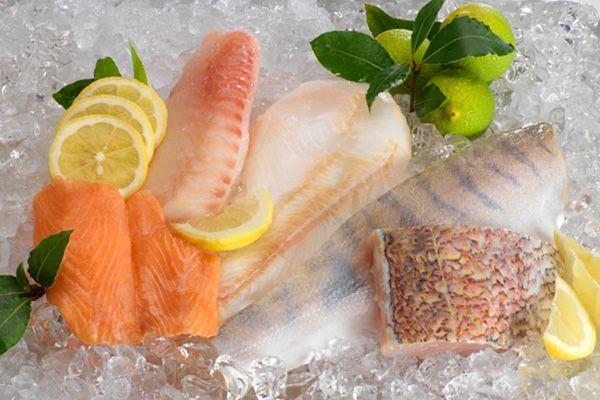 Kleines Fischprobierpaket