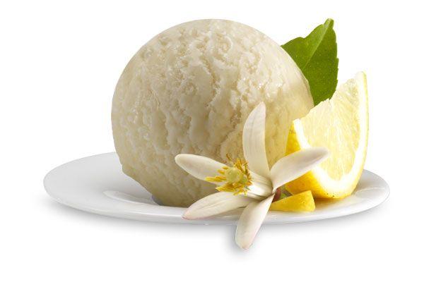 Zitronen-Sorbet, Italienisches Eis