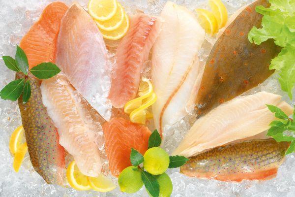 Großes Fischprobierpaket