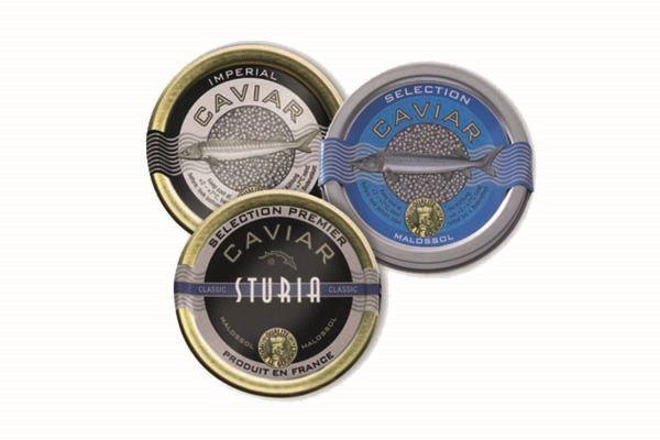 Caviar Probier-Paket mit Caviar-Löffel