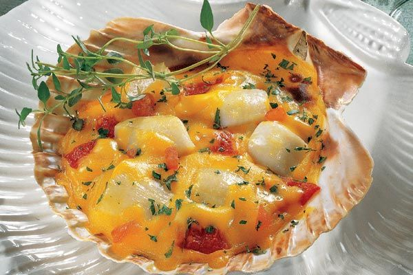 Coquilles Creole