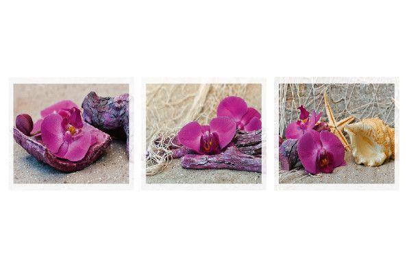 Grußkarte Orchidee